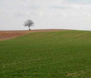 L'AGRICULTURE COMME PROJET SPATIAL  Par Rémi Janin  La position d'agriculteur suppose un rapport particulier à l'espace et plus largement à la nature. Celui-ci bien sûr, et de manière évidente, se trouve dans un rapport permanent avec le vivant et implique sa modification et sa nécessaire maîtrise dans une visée productive et positive. L'agriculteur modifie ainsi consciemment la nature...