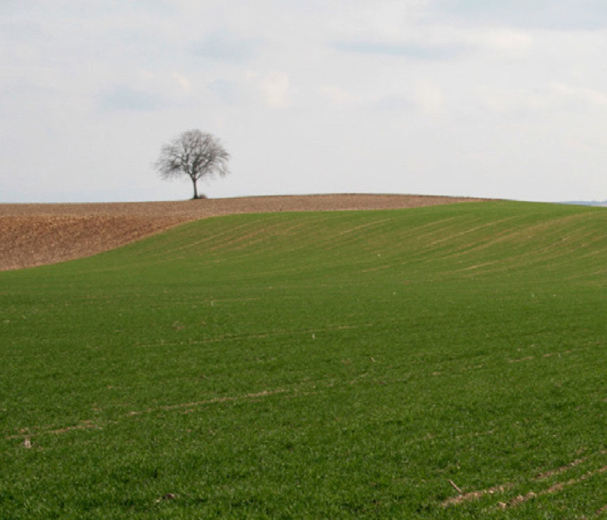 L'agriculture comme projet spatial