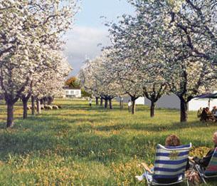 Agriculture, la révolution urbaine
