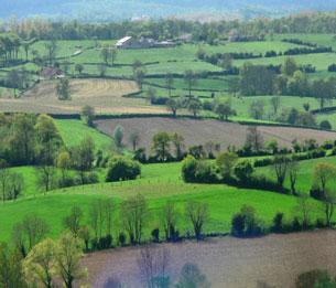 Le paysage vu par l'écologue