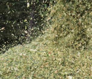 Par Thierry Boutonnier  Cet article, publié en 2015 dans la revue Billebaude a été rédigé suite au travail réalisé par l'artiste pour le musée de la Chasse et de la Nature à Paris dans la vallée de l'Argonne Ardennaise. Il présente une étape importante pour la réalisation du projet qui est la rencontre des agriculteurs et habitants environnants le domaine de Belval.