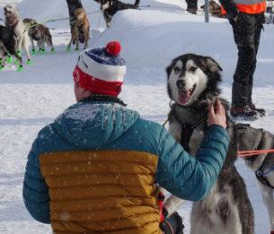 Par Lucie D'Heygère  Deuxième épisode d'une année dans le Finnmark.   Finnmarksløpetet est la plus grande course de chiens de traineau d'Europe. Elle rassemble environ 120 mushers et plus de 1000 chiens.