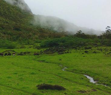 La Réunion, exclamation du paysage