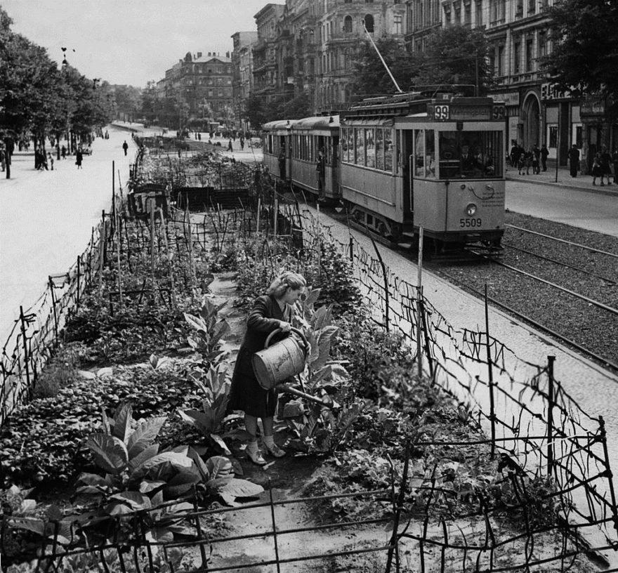 Image principale de Paysages résilients. Approche systémique du territoire post-effondrement