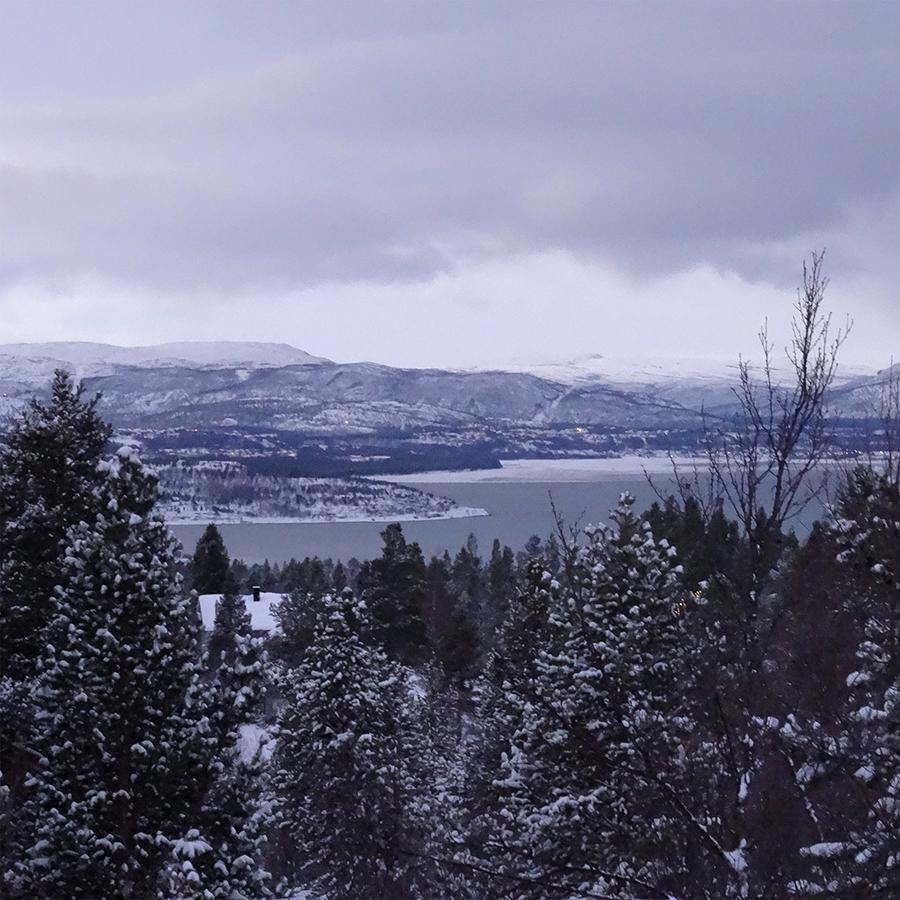 Une année dans le Finnmark, épisode 8