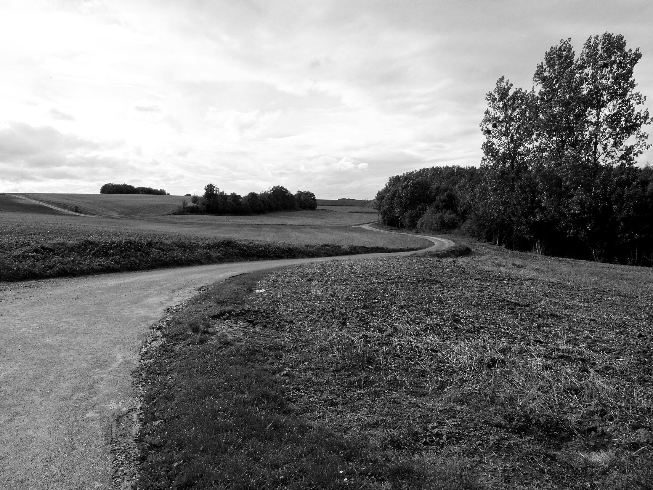 Dessiner un projet agricole durable dans la vallée de l'Aronde - De l'agriculture conventionnelle à l'agriculture biologique, comment le paysagiste peut-il enrichir un projet d'agricole durable ?