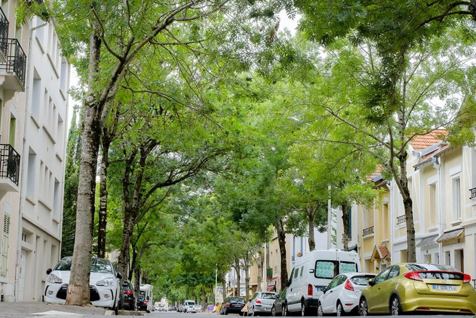 Évaluation des effets d'îlots de chaleur urbains à Vichy